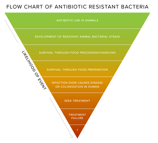 Veterinarians and Animal Antibiotic Use for the Philippines